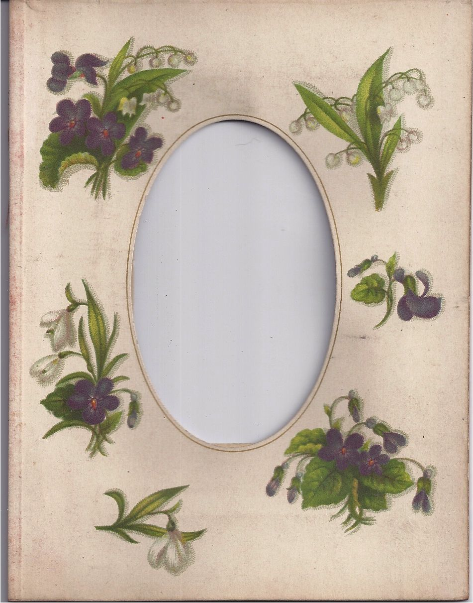 Page (Mat) from Victorian Photograph Album, CDV, Purple Flowers