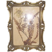 Lovely Brass Table-Top Photograph Frame Circa 1897