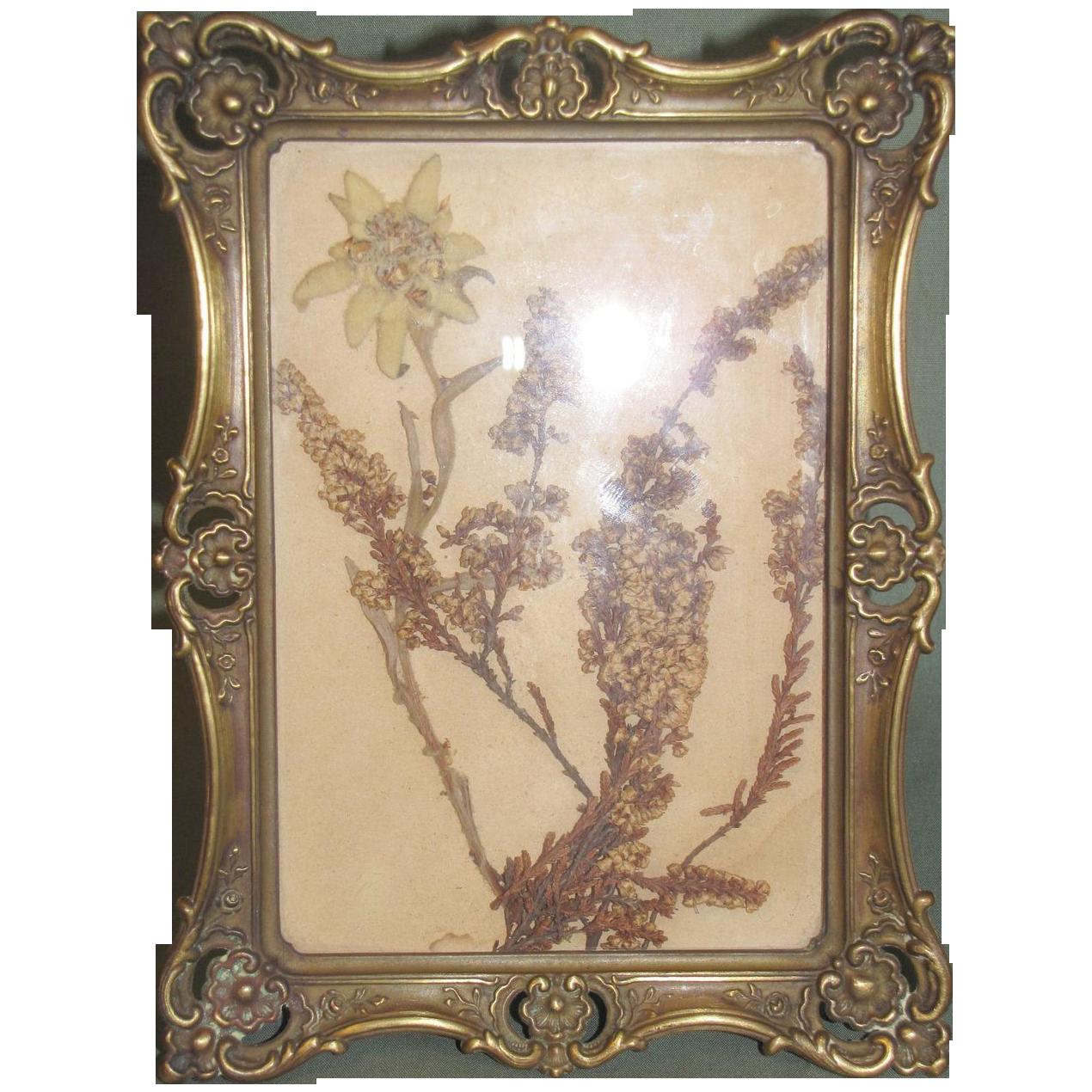 Lovely Brass Table-Top Photograph Frame Circa 1897