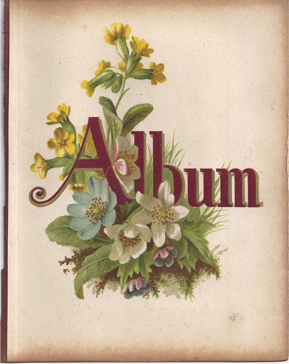 Page From Small Victorian Photograph Album, Title Page