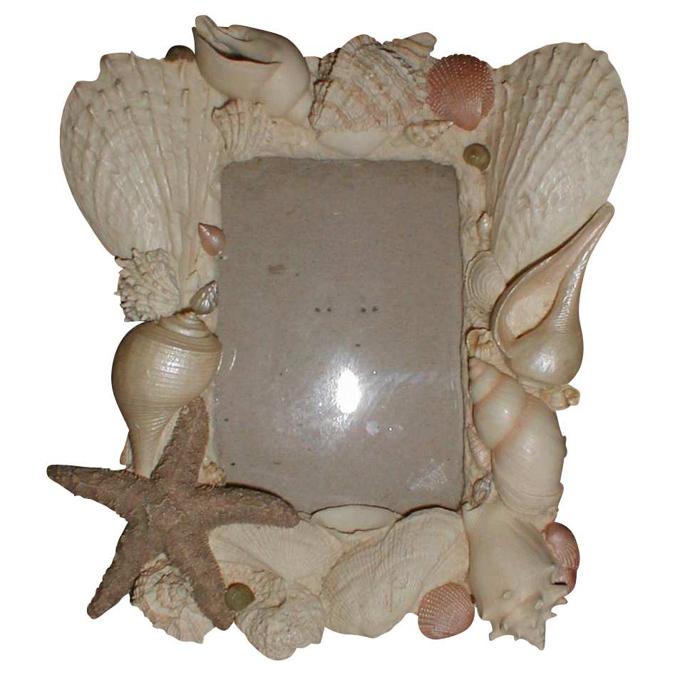 Lovely Vintage Shell Frame - Table Top or Wall
