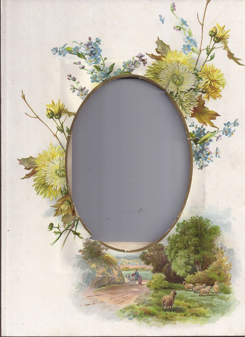Lovely Page (Mat) from Victorian Photograph Album, Floral/Landscape