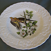 "Vintage 9"" Alfred Meakin Audubon Plate Carolina Turtle Dove"