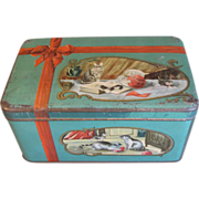 Vintage Biscuit Tin, Adorable Kittens, Numan's Holland