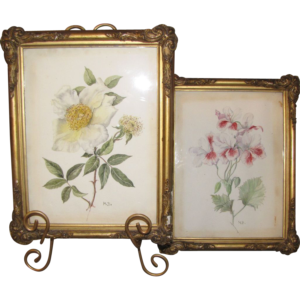 Pair of 19th Century Botanical Watercolors, Framed