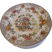 Lovely Early 19th Century Plate, 8 Available