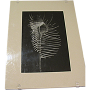 Art Photograph by Otha Spencer, Skeleton