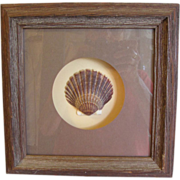 Rustic Shadow Box Frame with Shell