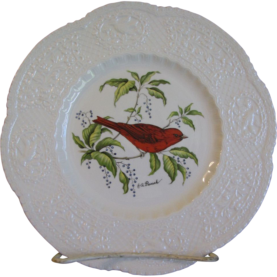 "Lovely Royal Cauldon 9"" Plate, SUMMER TANAGER"