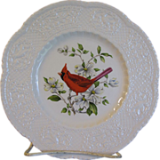 "Lovely 9"" Royal Cauldon Bird Plate, CARDINAL"