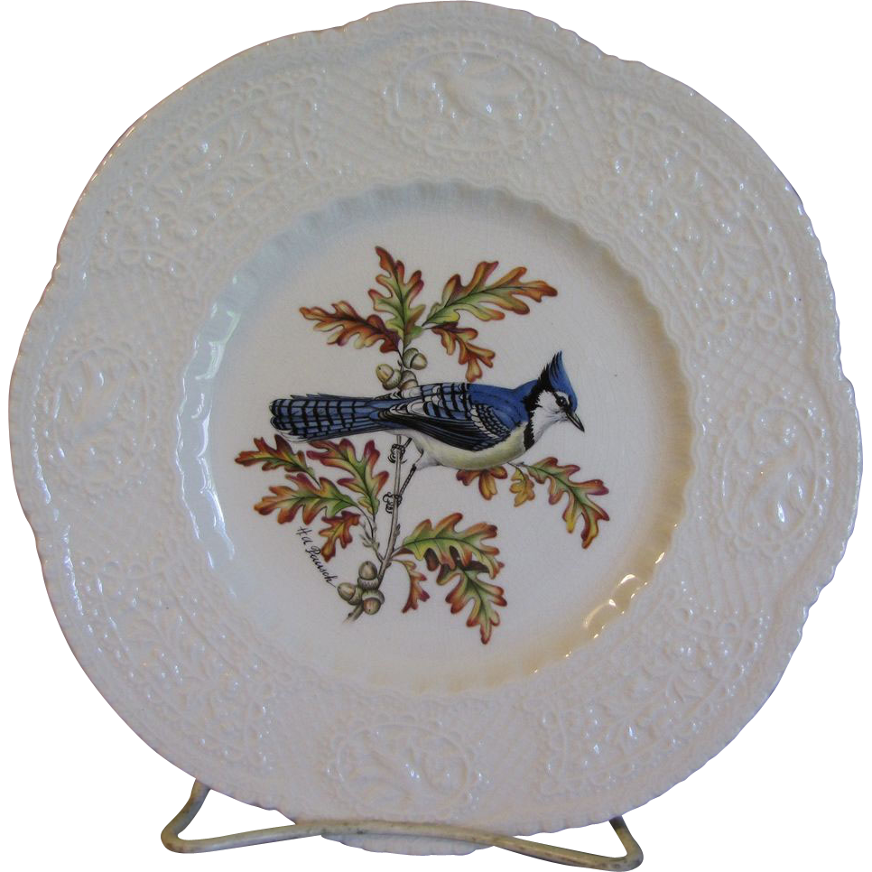 "Lovely 9"" Royal Cauldon Bird Plate, BLUE JAY"