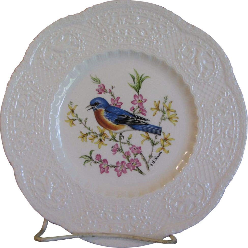 "Lovely 9"" Royal Cauldon Bird Plate, EASTERN BLUEBIRD"