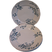 Set 5 Dinner Plates, CASTELAR, Green Transferware
