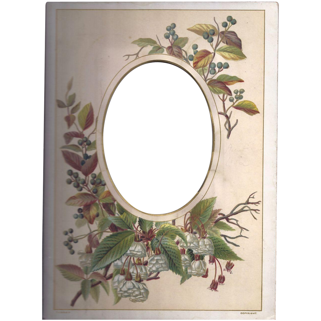 Colorful Page from Victorian Photograph Album