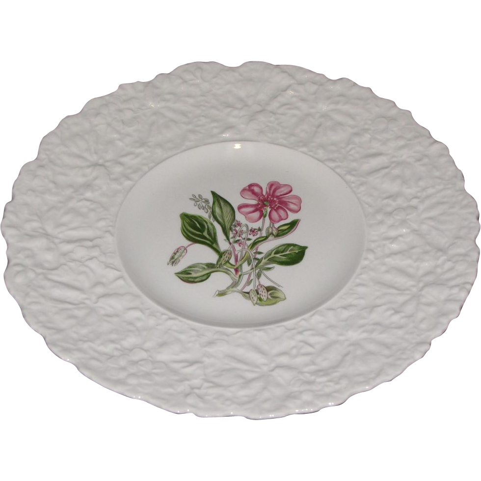 Lovely Floral Plate, Royal Cauldon Woodstock, ROCK PURSLANE