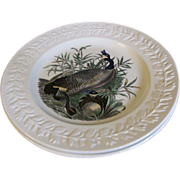 Lovely Large Bird Plate Adams Audubon CANADIAN GOOSE