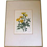 Attractive Numbered Framed Print, MARIGOLDS, Heffner