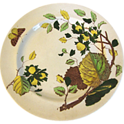 Early 19th Century Plate, Marked C.R. & Co, with Pattern Name NUT