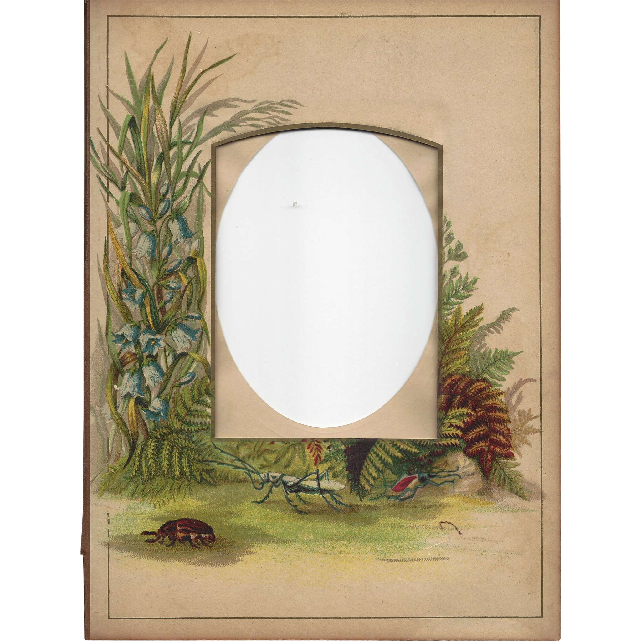 Unusual Chromolithograph Page from Victorian Photograph Album