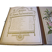 Lovely Victorian Photograph Album, Leather Cover, Floral Illuminations