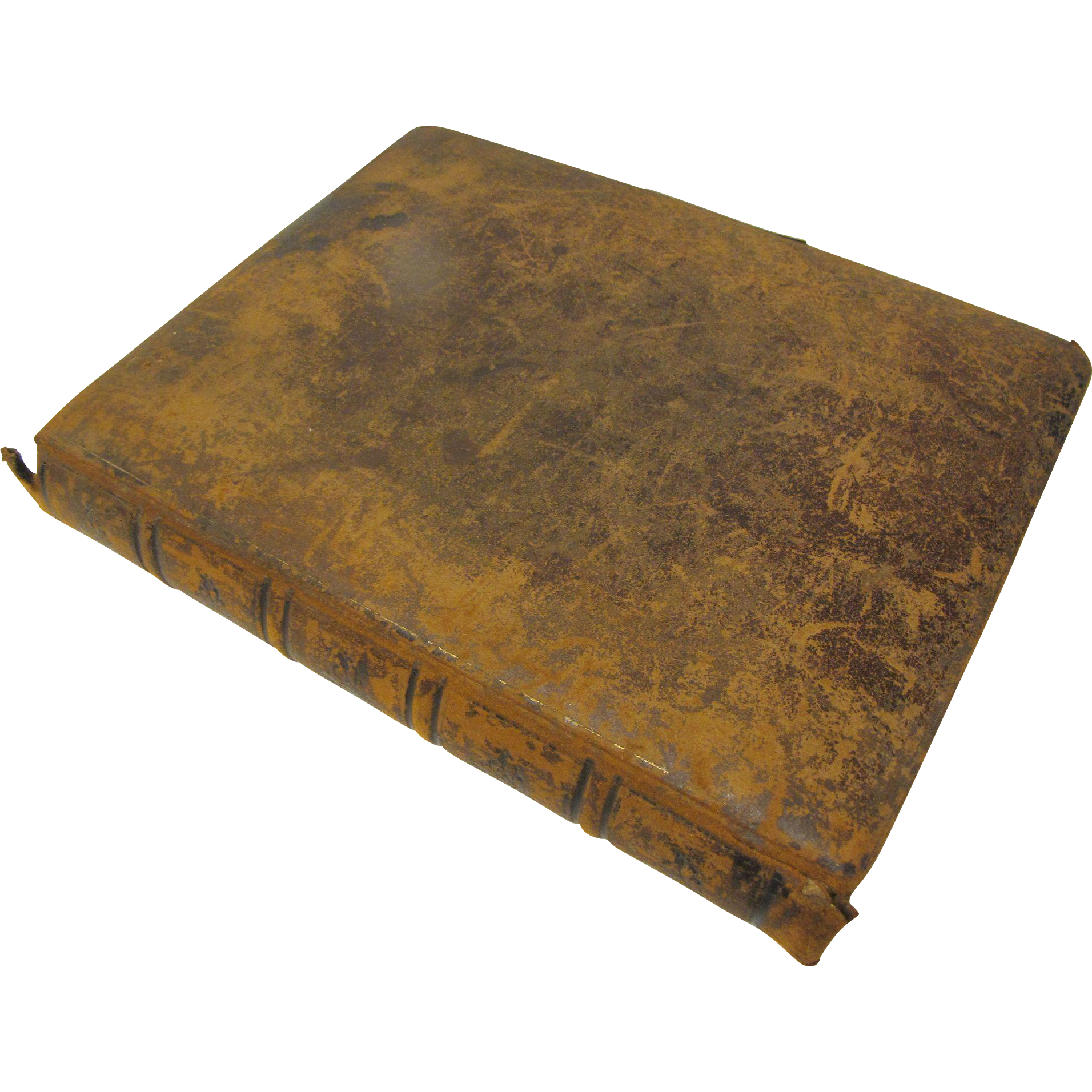 Lovely Victorian Leather Covered Photograph Album, Colored Lithograph Pages