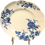 Lovely Blue Transfer Printed Floral Plate, DEVON SPRAY.  Doulton Burslem
