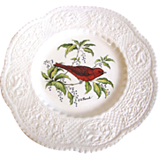 "Royal Cauldon 9"" Bird Plate, SUMMER TANAGER, Pausch"