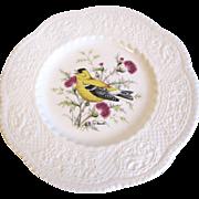 "Lovely Royal Cauldon Bird Plate, GOLDFINCH, 9"""
