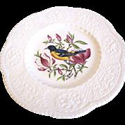 "Lovely Royal Cauldon 9"" Bird Plate, BALTIMORE ORIOLE"