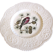 "Lovely Royal Cauldon Bird Plate, 9"", PINE GROSBEAK"