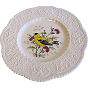 "Lovely 9"" Royal Cauldon Bird Plate, GOLDFINCH, Pausch"