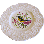 "Lovely 9"" Royal Cauldon Bird Plate, BALTIMORE ORIOLE"