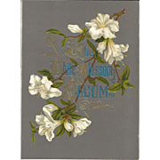 "Lovely Title Page from Victorian Photograph Album ""WHITE BLOSSOM"""