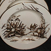 Lovely Brown Transferware Soup Plate, AMAZON, C & H, CA 1886-9