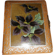 Victorian Photograph Album, Celluloid Cover, Clematis