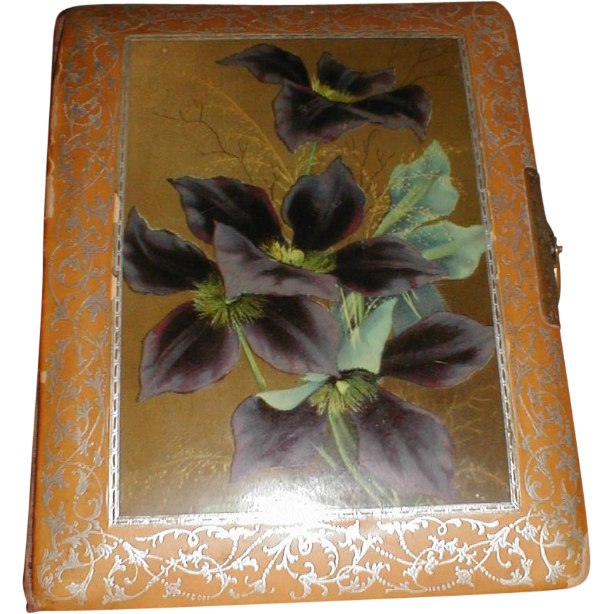 Victorian Photograph Album, Celluloid Cover, Clematis
