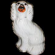 "Lovely 6.5"" Staffordshire White Spaniel (Dog), 19th Century"