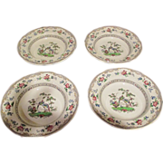 "Set of 4 ""Black Eden"" By Copeland/Spode Rim Soup C:1915"