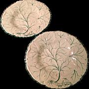 "Pr. Of Drabware 9"" Plates C:1880"