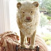 c1910 Steiff Lion on Wheels