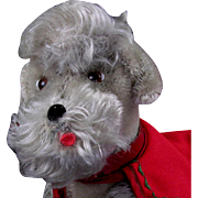 "Steiff 8-1/2"" Snooby Jointed Poodle with Collar and Coat"
