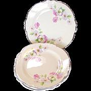 Homer Laughlin China ~ Virginia Rose ~ Fluffy Rose #1 ~ Bread Plates