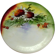 Hand Painted Plate ~ Caine's Studio ~ Favorite Bavaria ~ Artist Signed ~ Early 20th Century ~ Flowers, Berries, Greenery ~ Colorful!