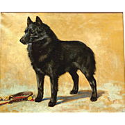 "Superb 1927 Dog portrait painting, a ""Schipperke"" or ""Spitz"". By highly listed Master, signed and dated."