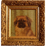 Superb 1908 dog portrait painting by Alice Leotard, portrait of a pekingese dog, full provenance, 1st price in Paris Salon. High value!