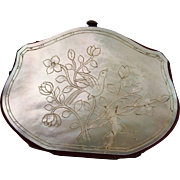 RESERVED RW Victorian Mother of Pearl Coin Purse French Circa 1860