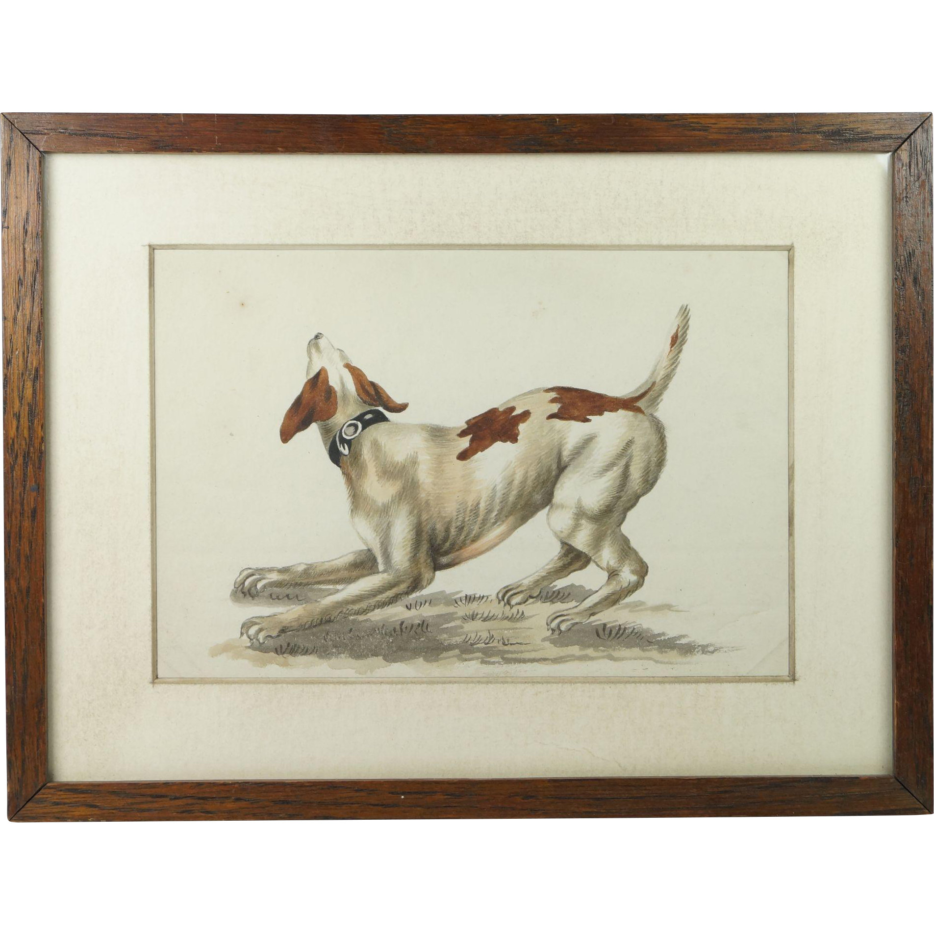 Antique 19th Century Dog Watercolor Painting Pointer English School Victorian Circa 1840