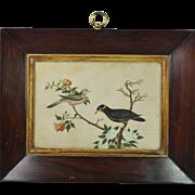 Georgian Chinese Bird Painting On Pith Rice Paper Georgian Rosewood Frame Circa 1820 Gorgeous