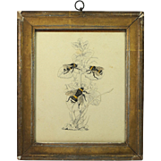 Antique BEE Pen and Ink Drawing Charming Circa 1850