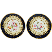 19th Century Porcelain Saucer Plate Pair Floral English Circa 1815